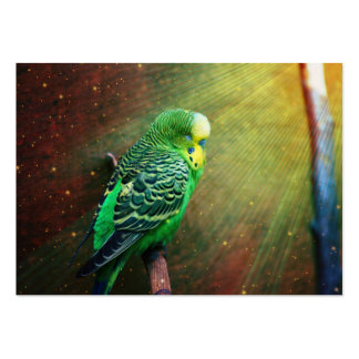 Budgie Bird Large Business Card