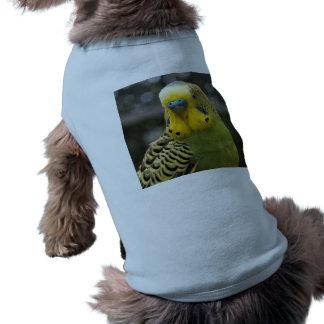 Budgie Bird Shirt