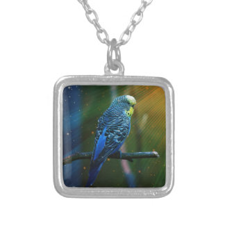 Budgie Bird Silver Plated Necklace