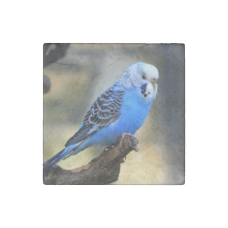 Budgie Stone Magnet