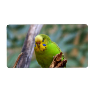 Budgie Shipping Label