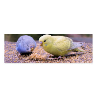 Budgie Mini Business Card