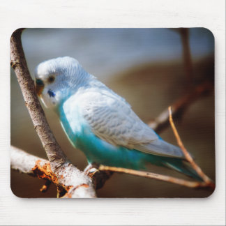 Budgie Mouse Pad