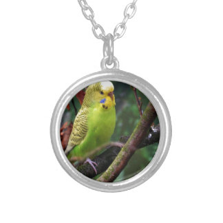 Budgie Personalized Necklace