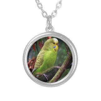 Budgie Custom Necklace