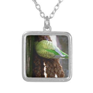 Budgie Jewelry