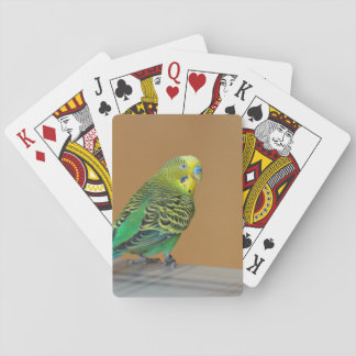 Budgie Playing Cards