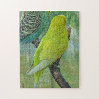 Budgie Puzzles
