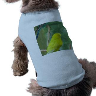 Budgie Camiseta De Perrito