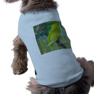 Budgie Camisetas De Mascota