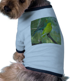 Budgie Camisetas De Perrito