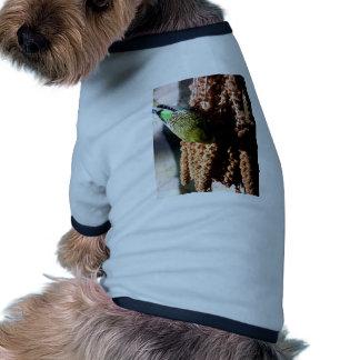 Budgie Camisa De Perro