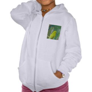 Budgie Hooded Sweatshirts