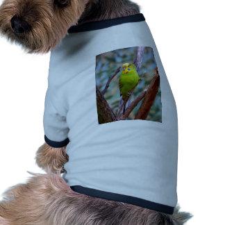 Budgie verde camisetas de mascota