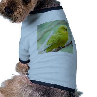 Budgie verde camiseta de perro