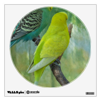 Budgie Room Graphic