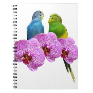 Budgie with Purple Orchid Notebook