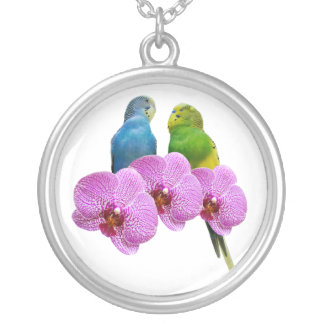 Budgie with Purple Orchid Silver Plated Necklace