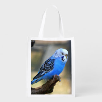 Budgie Reusable Grocery Bags