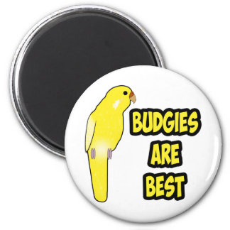 Budgies Are Best Magnet