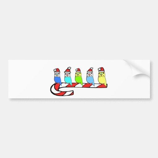 Budgies- Christmas Bumper Sticker