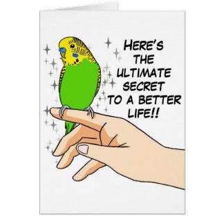 Budgies hace vida mejor tarjeta de felicitación