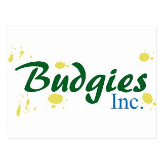 Budgies Inc. Postcard