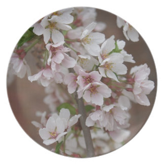 Buds and Blooms Dinner Plate