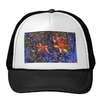 Buds And Blooms Trucker Hats