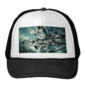 Buds and Branches Mesh Hat