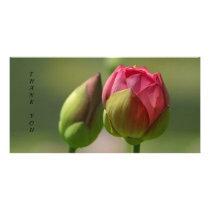 Buds Card