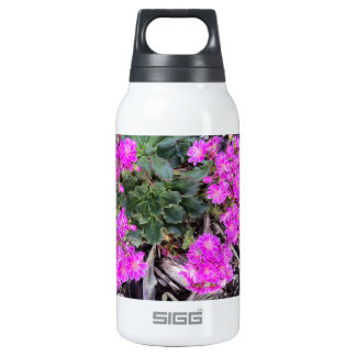 Buds 10 Oz Insulated SIGG Thermos Water Bottle