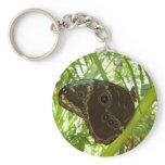 Bue Morpho Butterfly Keychain