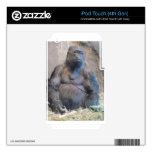 Buen gorila iPod touch 4G calcomanía