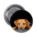 Buen perro pin