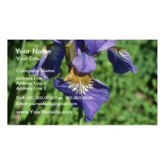 Buena bandera de la medida, flores (del iris) tarjetas de visita