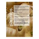Buena guía cada vez mayor: Alcachofas y pastinacas Tarjetas Postales