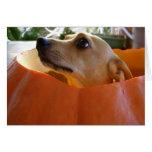Buena tarjeta de la calabaza de Halloween de la ch