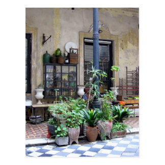 Buenos Aires Scene with Green Plants in Courtyard Postcard