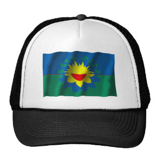 Buenos Aires waving flag Mesh Hat