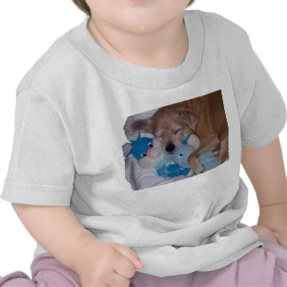 Buenos amigos camisetas