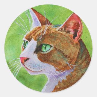 Buerller, the Feral Tabby Cat Classic Round Sticker