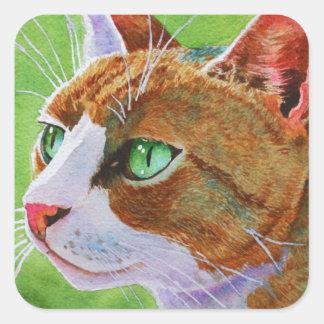 Buerller, the Feral Tabby Cat Square Sticker