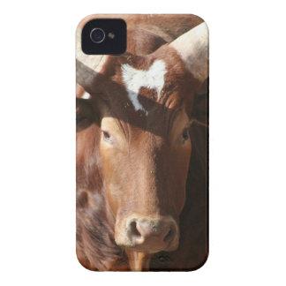 Buey con el caso largo del iPhone 4 de los cuernos Case-Mate iPhone 4 Protectores