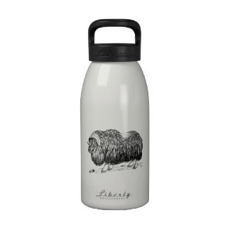 Buey de almizcle botella de agua reutilizable