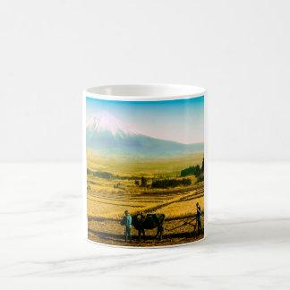 Bueyes de los granjeros que aran el campo en la taza de café