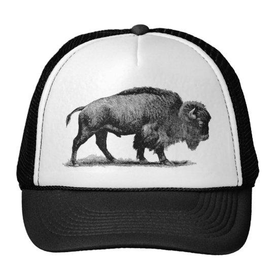 Búfalo americano gorra