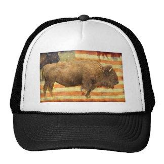 Búfalo americano gorro