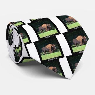 Búfalo (bisonte) Kansas, Oklahoma, Wyoming Corbata