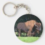 Búfalo (bisonte) Kansas, Oklahoma, Wyoming Llavero Redondo Tipo Pin